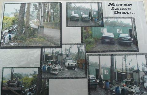 mural com fotos da evolução